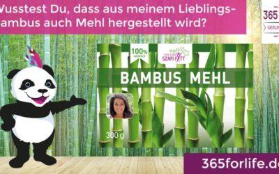 Historische Besonderheiten von Bambus